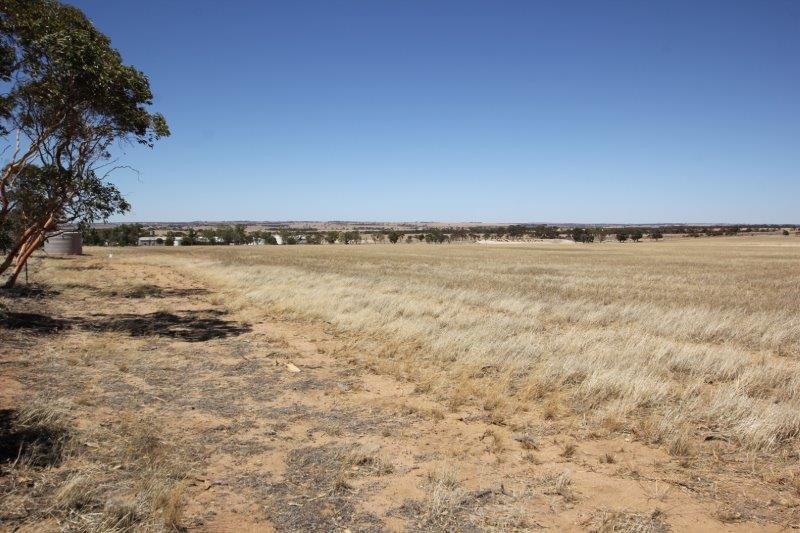 1050 Soldiers Road, Wadderin WA 6369, Image 2