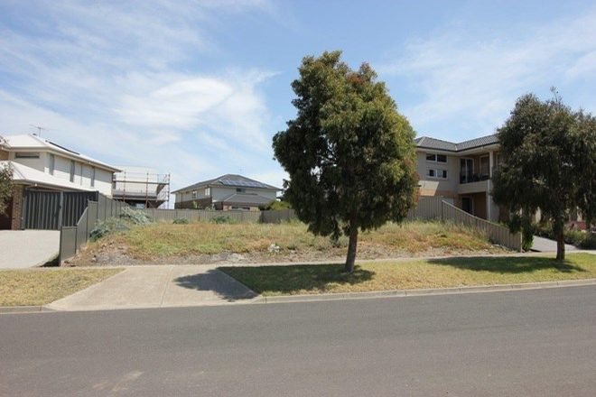 Picture of 7 Rice Flower Road, SUNSHINE NORTH VIC 3020