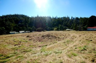 Picture of Lot (1) Fitzgerald Station Road, Fitzgerald TAS 7140