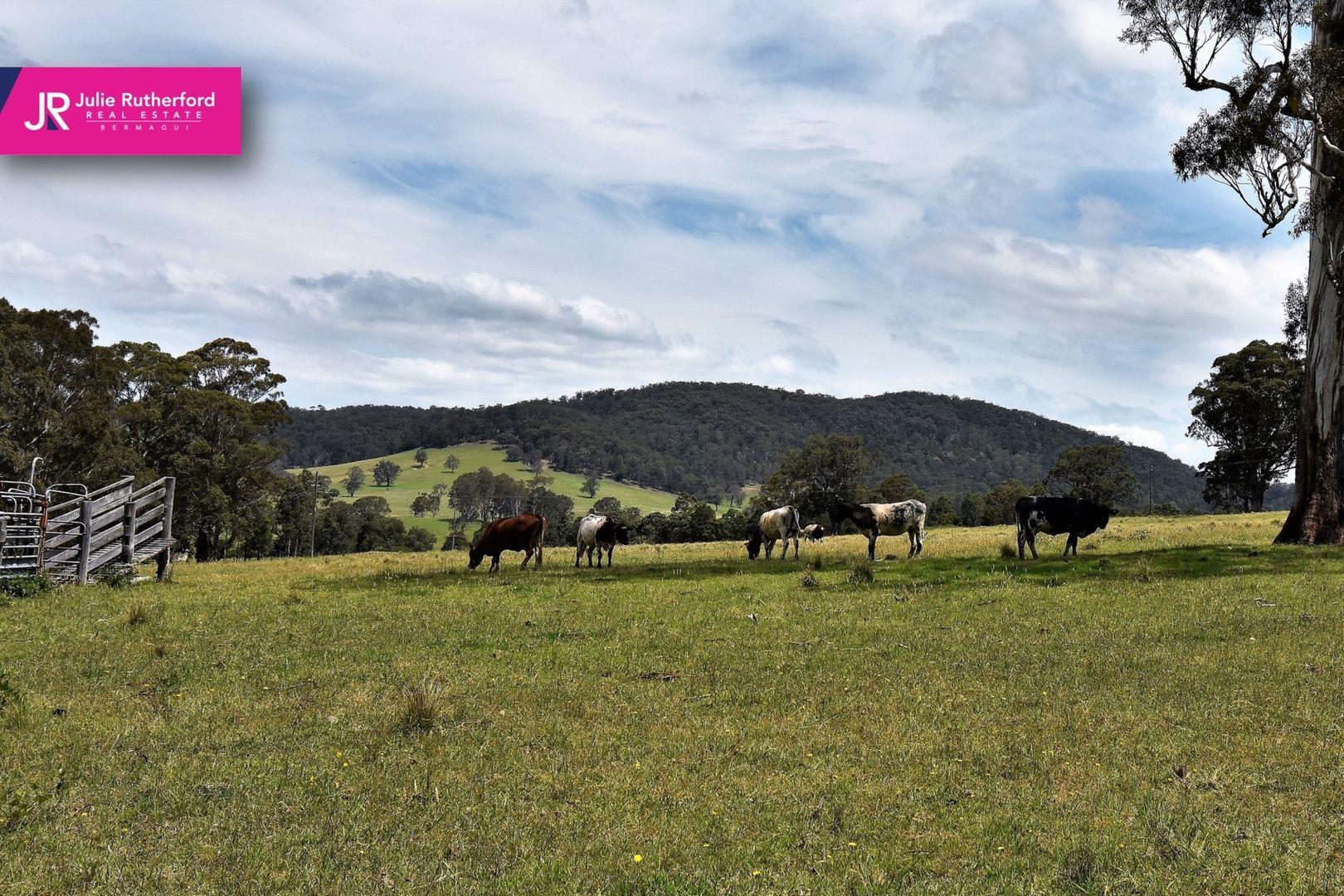 Cobargo Bermagui Road, Cobargo NSW 2550, Image 0