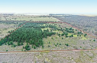Picture of 3 Carrs Creek Road, Longford VIC 3851