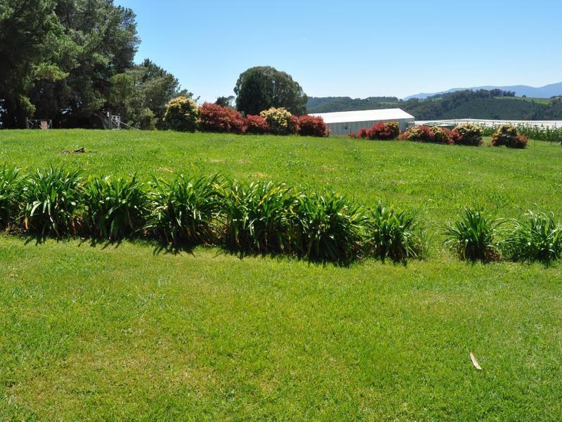 138 Cottams Road, Batlow NSW 2730, Image 1