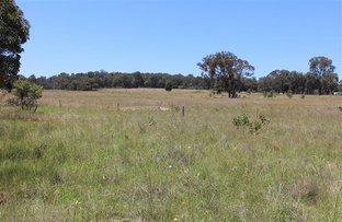 Picture of Invergowrie NSW 2350