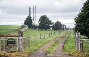 Picture of 470 Black Lane, Hagley TAS 7292