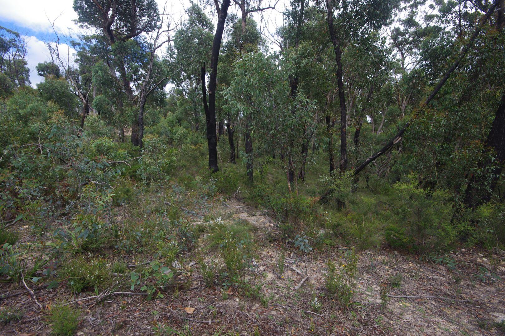 6-8 The Glen Road, Mount Victoria NSW 2786, Image 2