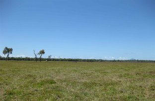 Picture of Bilyana QLD 4854