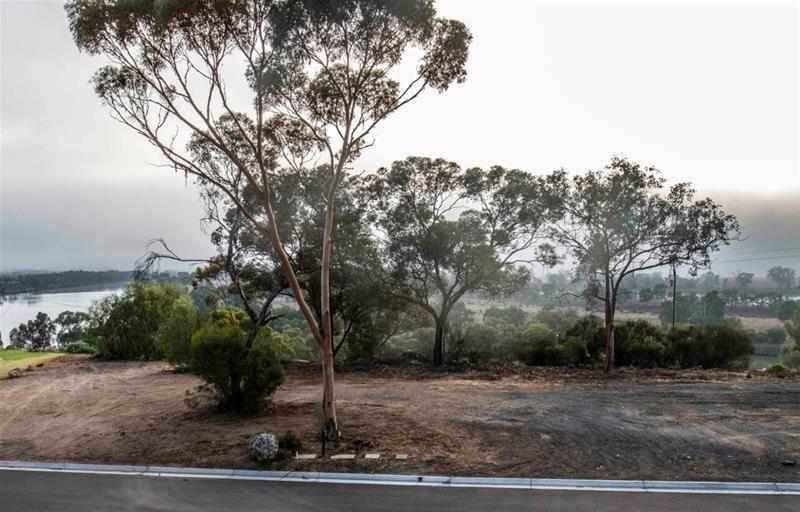 Lot 14 & 16 'Aruma River Resort' Cliff View Drive, Walker Flat SA 5238, Image 1