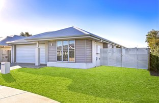 Picture of 15 Tarwhine Place, Mountain Creek QLD 4557