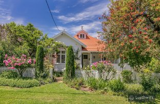 Picture of 19 Halcyon Avenue, Wahroonga NSW 2076