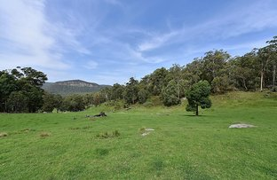 Picture of Lots 13 And 48 Mill Lane, Quorrobolong NSW 2325