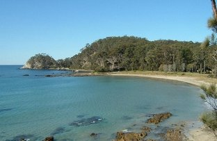 Picture of Surf Beach NSW 2536