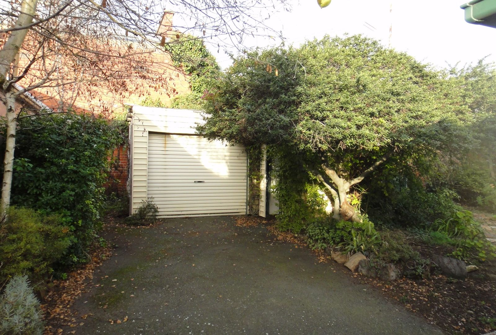 114 Lyons Street North, Ballarat Central VIC 3350, Image 4