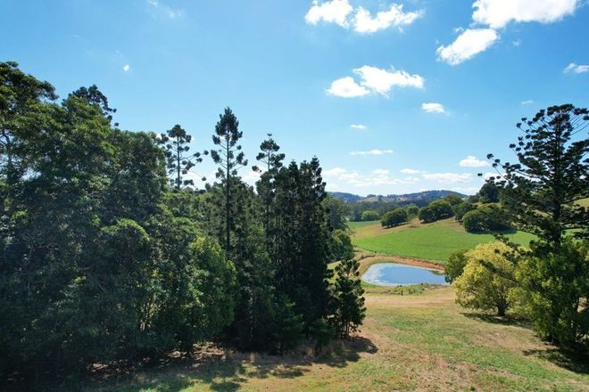Picture of WOLVI QLD 4570