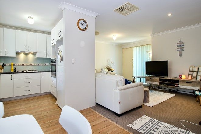 Picture of 3/17 Casilda Place, COOLOONGUP WA 6168