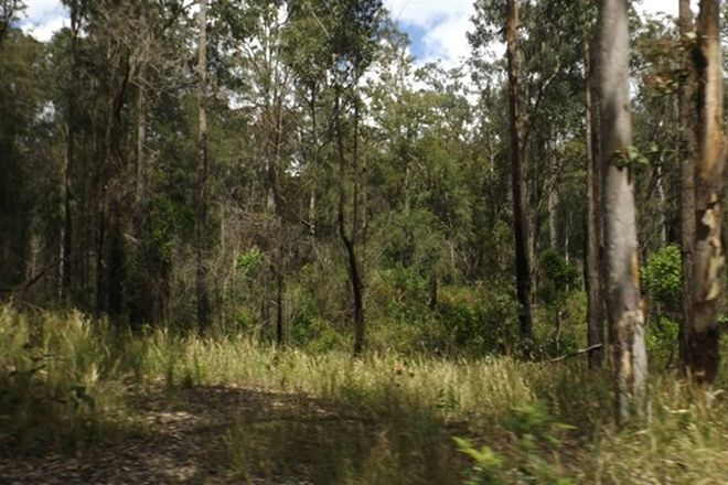 Picture of 876 Phillips Swamp Road, BUSBYS FLAT NSW 2469