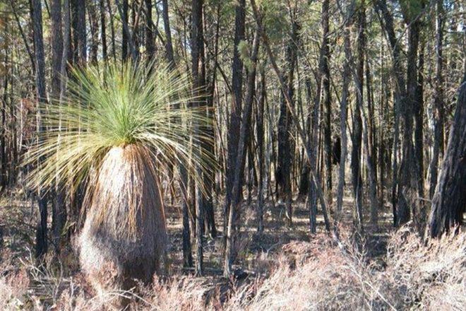 Picture of 8000 Premer Road, PREMER NSW 2381