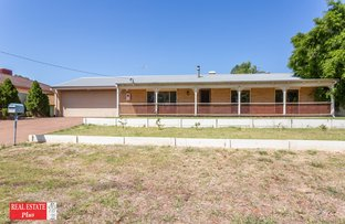 Picture of 4 Settler Place, Greenmount WA 6056