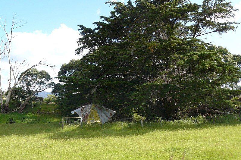 Lot 1 Tasmans Arch Road, Eaglehawk Neck TAS 7179, Image 1