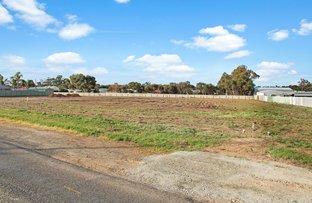 Picture of Lot 24 Bremer Road, Murray Bridge SA 5253