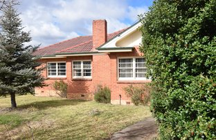 59 High Street, Tenterfield NSW 2372