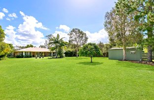 Picture of 15 Bottlebrush Place, Little Mountain QLD 4551