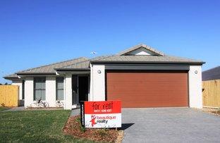 Picture of 14 Ruben Court, Collingwood Park QLD 4301