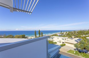 Picture of 8 Kiamba Court, Sunshine Beach QLD 4567