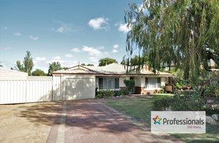 Picture of 3 Greensill Crescent, Australind WA 6233