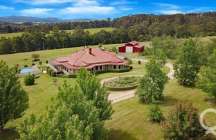 Picture of 245 Old Telegraph Road East, Crossover VIC 3821