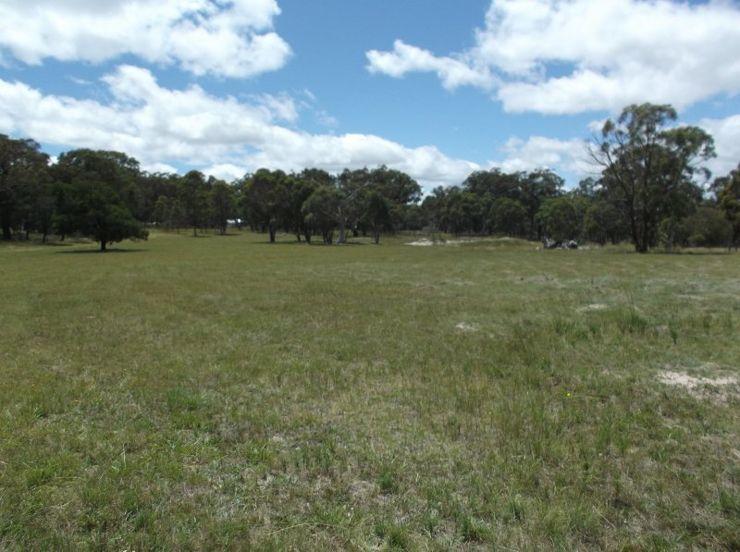 Liston NSW 2372, Image 0