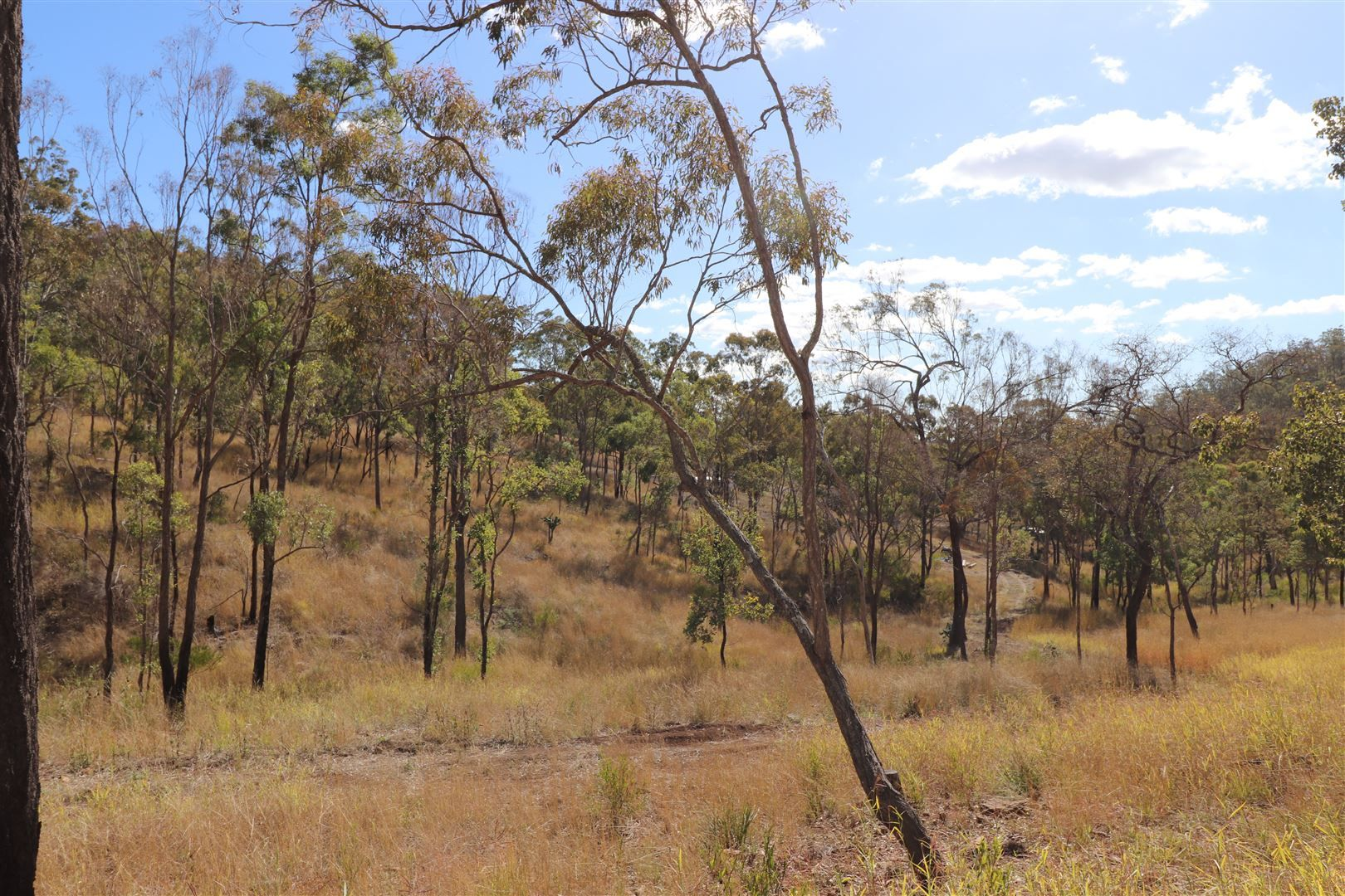 1 Address Available On Request, West Haldon QLD 4359, Image 0