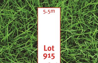 6 Harvey Circuit, Mawson Lakes SA 5095