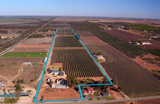 Picture of 90 Benlow Road, Waikerie SA 5330