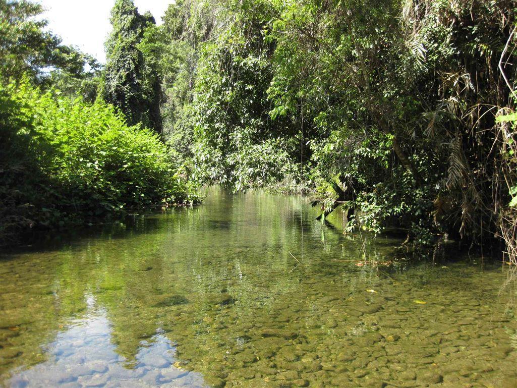 629 Tully Gorge Road, Jarra Creek QLD 4854, Image 0