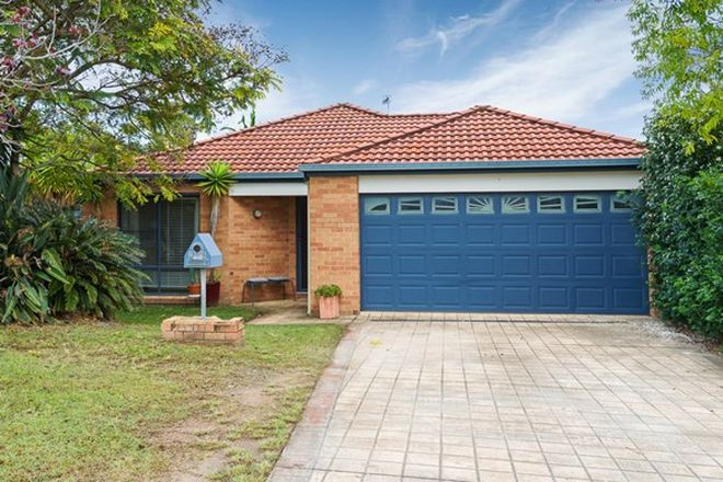 Picture of 20 Fanning Court, PACIFIC PINES QLD 4211