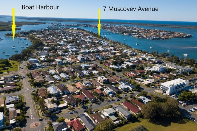 Picture of 7B Muscovey Avenue, PARADISE POINT QLD 4216
