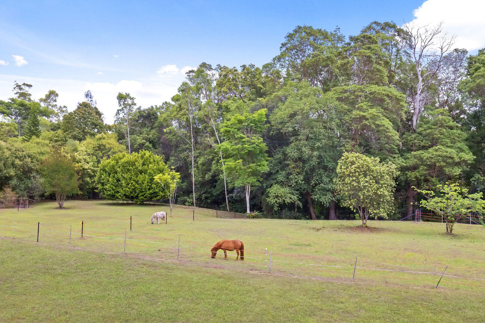 202 Blackall Range Road, West Woombye QLD 4559, Image 1