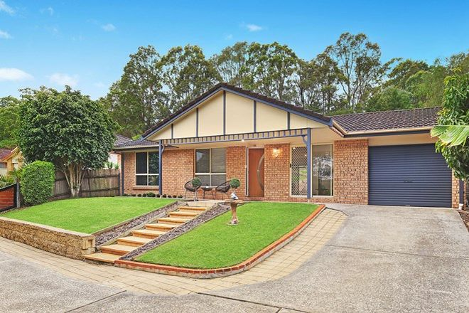 Picture of 14 Pinkwood Place, BLACKBUTT NSW 2529