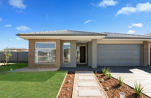 Picture of 7 Inglewood Drive, Werribee VIC 3030