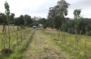 Picture of 8 Gorge Road, Nowa Nowa VIC 3887
