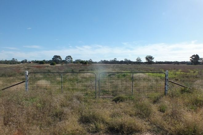 Picture of 51 Connors Lane West Wyalong, WEST WYALONG NSW 2671