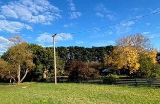 Picture of 70 Naroghid School Road, Camperdown VIC 3260