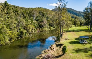 Picture of 862 Lamington National Park Road, Canungra QLD 4275