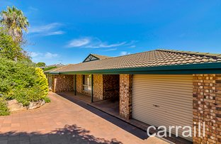 Picture of 24 Austerlitz Court, Greenwith SA 5125
