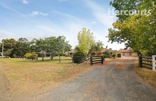 Picture of 31 Taber Street, Menangle Park NSW 2563