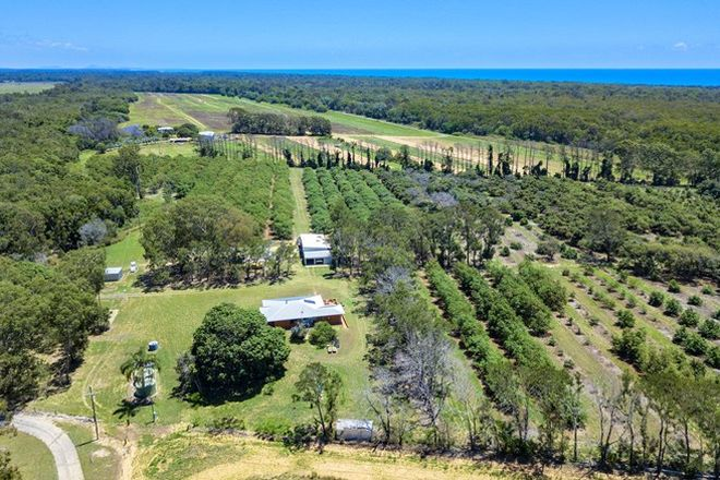 Picture of 1076 North Littabella Road, MULLETT CREEK QLD 4670