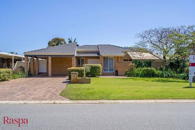 Picture of 9 Colonial Drive, BIBRA LAKE WA 6163