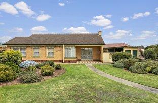Picture of 11 Jellicoe Street, Flinders Park SA 5025
