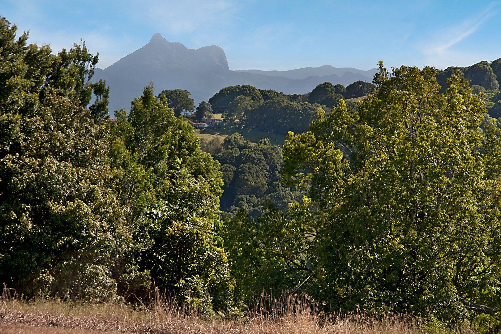 Bungalora NSW 2486, Image 2