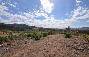 "Picture of ""Darbyshire"" Hickman Creek Road, Glenlogie VIC 3469"